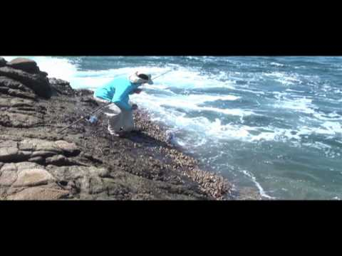 Surf Fishing Costa Rica