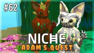 A Healer's Hope! | Niche Let's Play • Adam's Quest - Episode 62