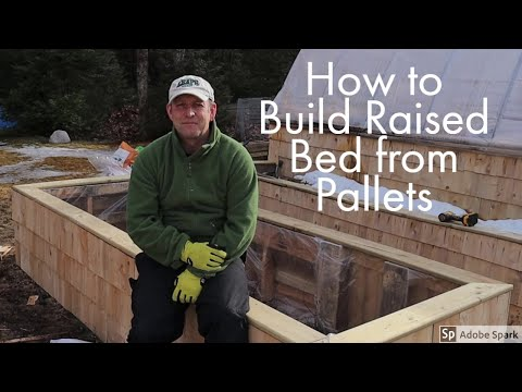 how-to-make-a-raised-bed-out-of-pallets---the-beginners-guide-to-growing-your-own-veg-part-6