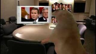 Dramatic Prairie Dog watches Bush! thumbnail