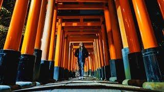 esplorazione notturna del Fushimi Inari thumbnail