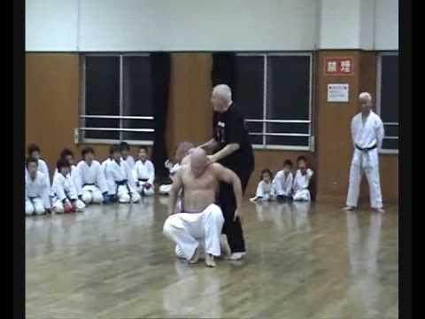 Japonia 2008 - Trening i pokazy w Osaka Center Sport