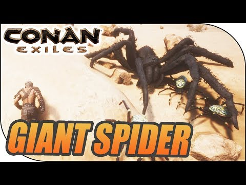 GIANT SPIDER FIGHT, Conan Exiles S04E04