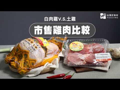 【餐桌上的肉蛋魚】市售雞肉比較,土雞v.s.白肉雞有何不同?