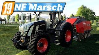 LS19 NF Marsch #56 - Das Heu zu Ballen pressen, Hafer abfahren   Farming Simulator 19 Video