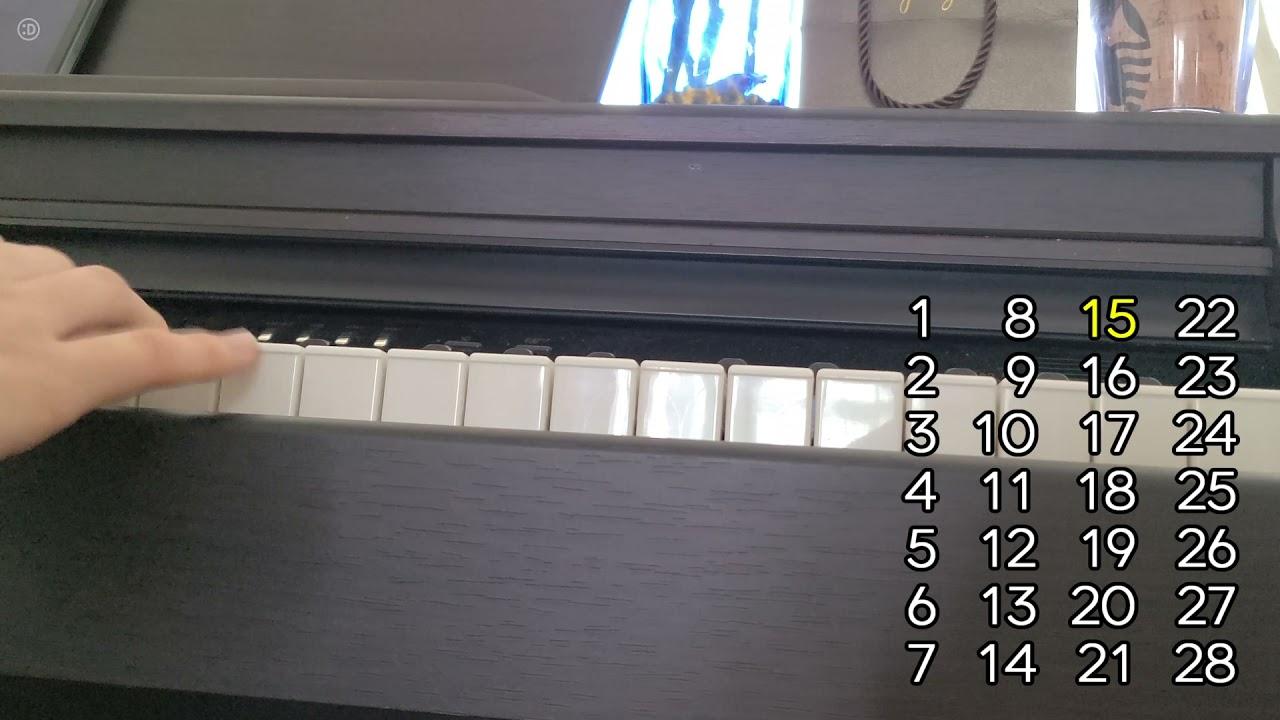 난 피아노는 못 치지만 음감은 좀 있지 【의식의 흐름 보카로 퀴즈】