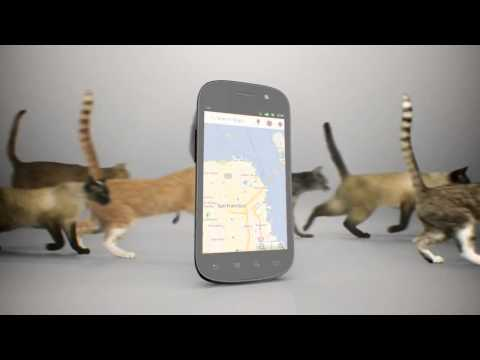 Sprint - Nexus S™ 4G Cats