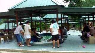 Hot Water Sulphur Spring Poring, Ranau, Sabah
