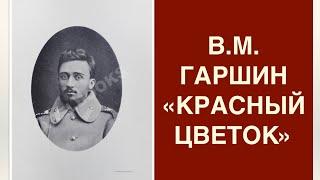"""Урок литературы """"В.М. Гаршин – """"человек потрясенной совести"""". Анализ рассказа """"Красный цветок""""."""