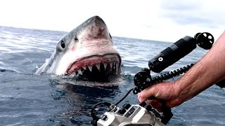 10 Shocking Videos Caught On GoPro