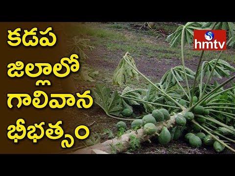 Unseasonal Rains Destroy Crops In Kadapa   Telugu News   hmtv