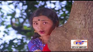 Chinna Ponnu Manam ||சின்ன பொண்ணு மனம் || S. Janaki || Love H D Song