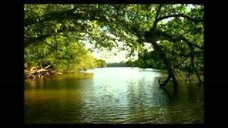 Terra Tombada - Chitãozinho e Xororo