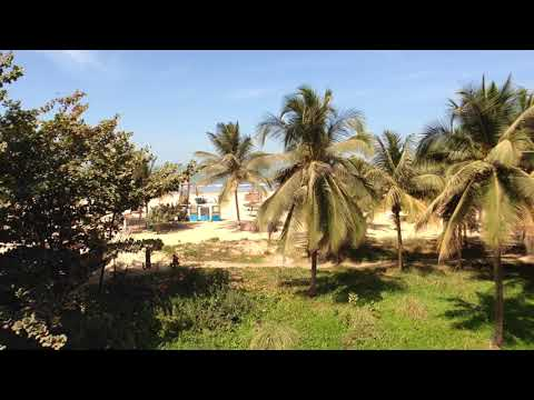 View from my balcony, Palm Beach Hotel, Kotu, The Gambia (30/01/2018)