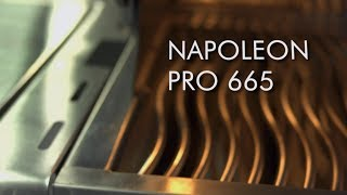 Barbecues Galore Woods Fireplaces: Napoleon Pro665rsib