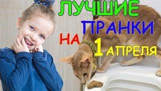 Подборка ЛУЧШИХ розыгрышей и пранков на 1 АПРЕЛЯ!!!!!   СУПЕР ПРАНКИ для друзей!!!
