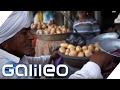 Verrücktes Indien: Die Veggie-Stadt  Galileo Lunch Break