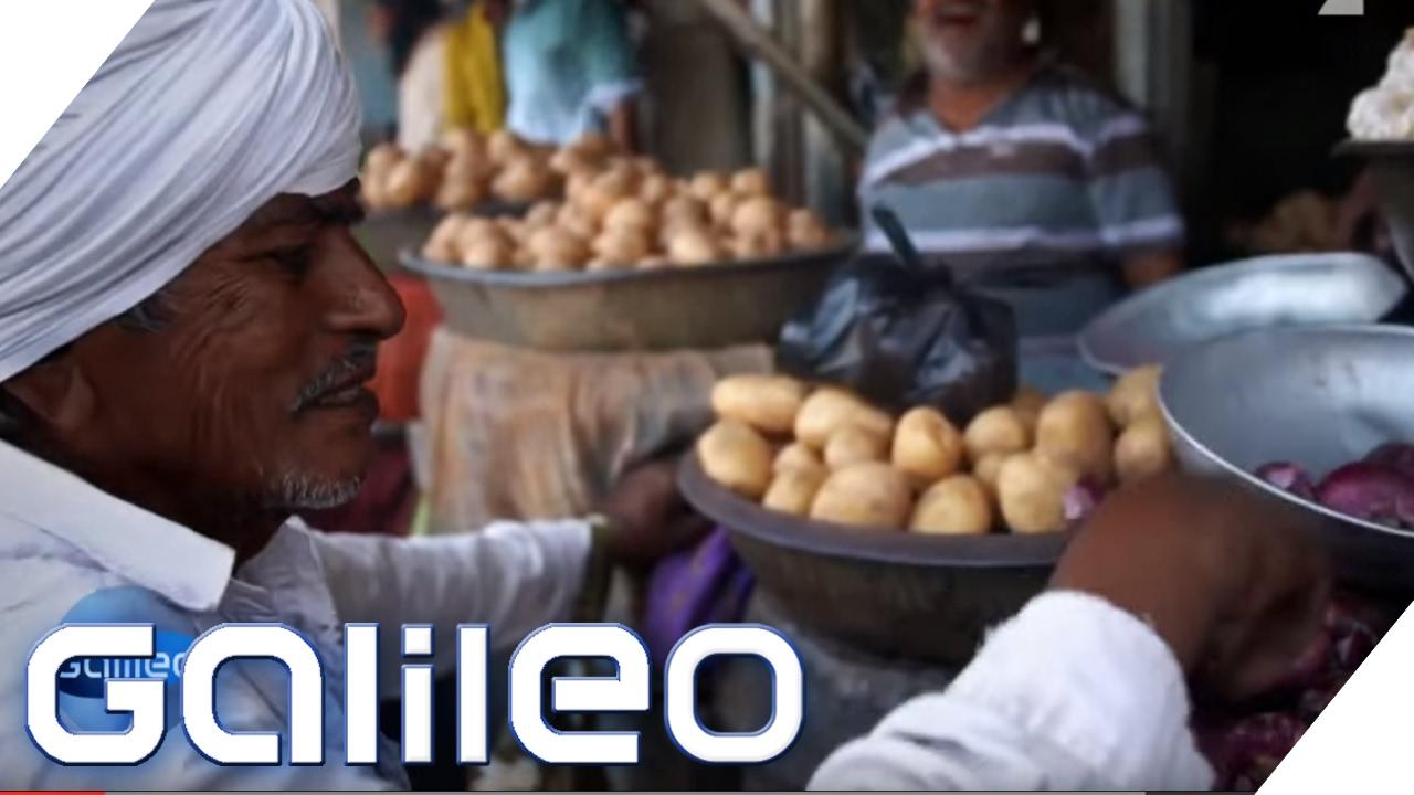 Verrücktes Indien: Die Veggie-Stadt | Galileo Lunch Break