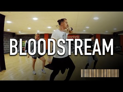 BLOODSTREAM by Astrid S | Dance ROUTINE Video | @BrendonHansford Choreography