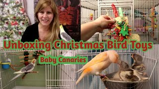 Unboxing Christmas Bird Toys | Baby Canaries | Watch until the end for the Canaries
