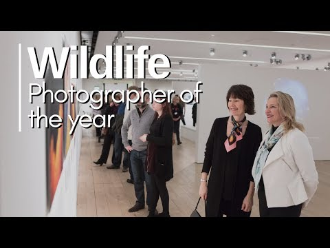 Wildlife Photographer of the Year - 2018