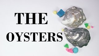 STOP MOTION ANIMATION - THE OYSTERS