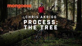 Chris Akrigg Process: The Tree