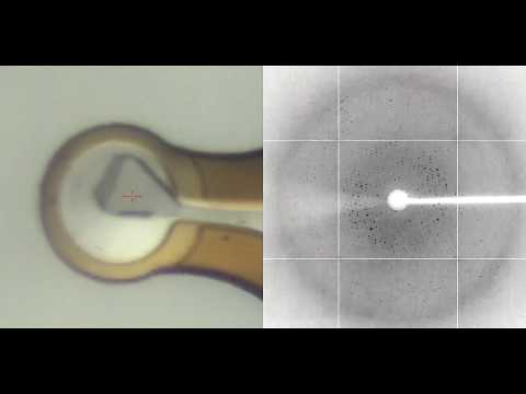 X-ray diffraction of a protein crystal
