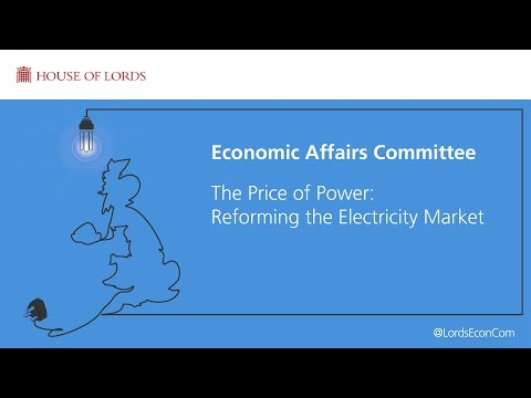 The Price of Power: Reforming the electricity market | Economic Affairs Committee | House of Lords