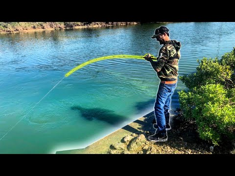 MONSTER FISH In SALTWATER SPILLWAY!! (5 SPECIES)