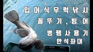 삼길포 만석좌대 우럭낚시 빙어,꼴뚜기미끼 병행 사용기 …