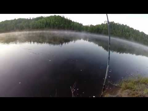 Northern Ontario Walleye Missinaibi River