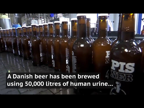 Danish brewery produces 'Pisner' beer using recycled human urine
