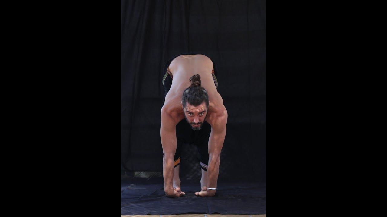 Yogahipiclub Tu Sala De Yoga En Plena Naturaleza