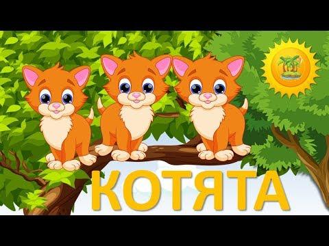 Мультфильм про котят для малышей