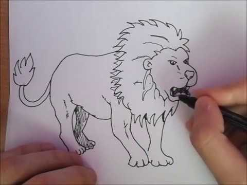 Kako Nacrtati Strašnog Lava How To Draw A Dangerous Lion Easy
