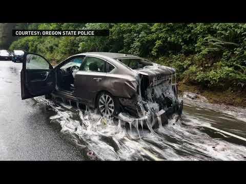 Truck Full Of Slime Eels Crashes On Highway 101