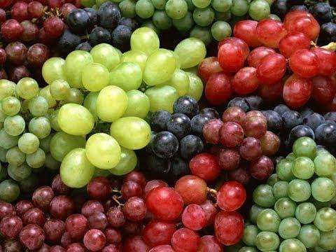 Крем со стволовыми клетками винограда.