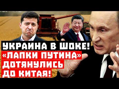 Шок, Украина такого