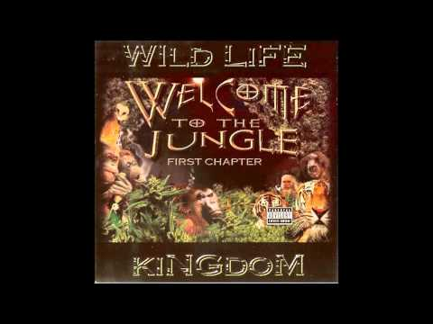 07 WILD LIFE KINGDON WELCOME TO THE JUNGLE  Stay Alive