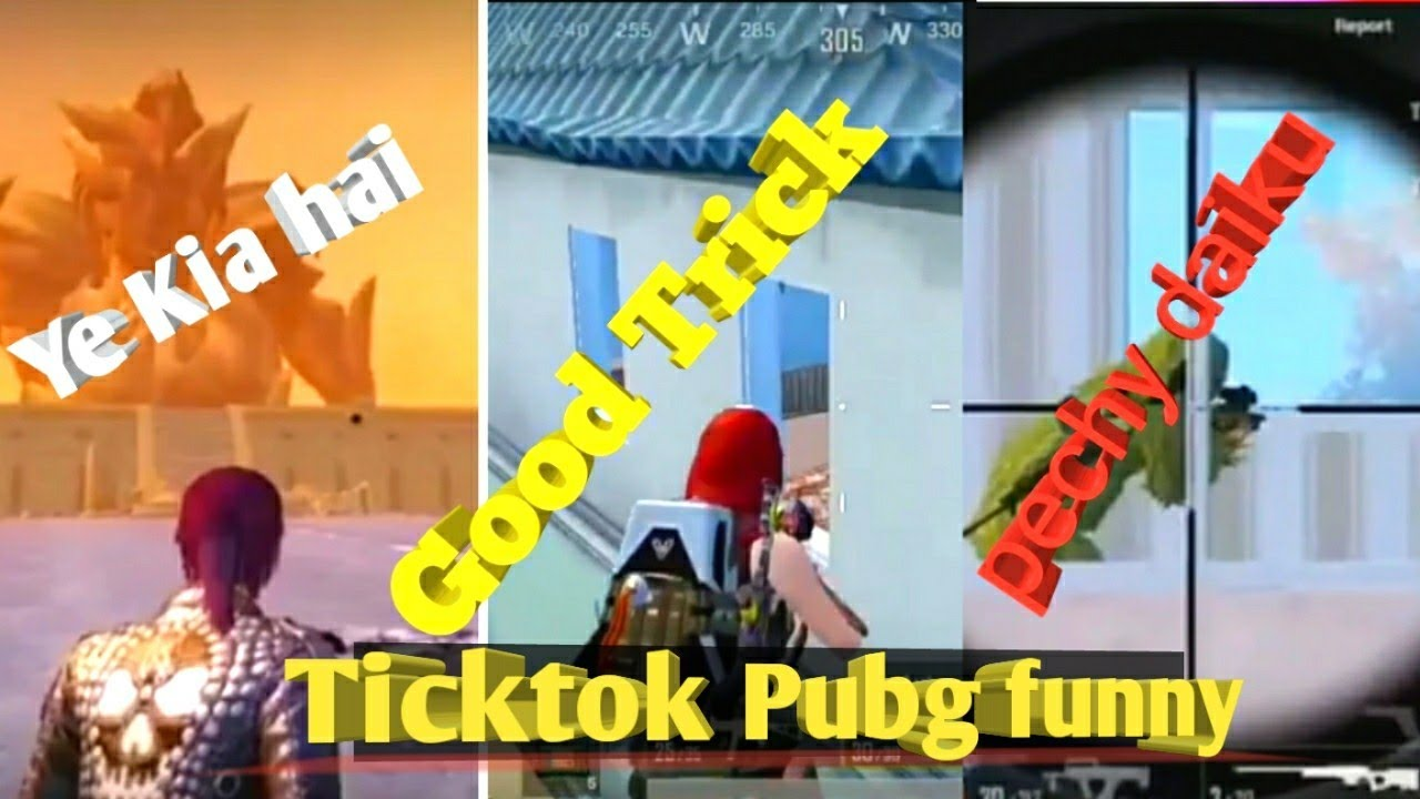 pubg tiktok best funny viral video [pubg mobile