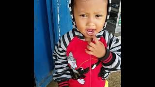 Lagu anak indonesia daerah kendari sulawesi tenggara - susua haki tia #bahasa tolaki terlucu - Stafaband