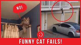 Funny Cat Fails Video 2020  TRY NOT TO LAUGH!