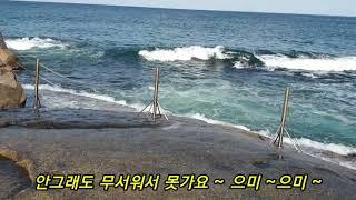 휴휴암 /강원도 양양 , 동해바다,거북바위,파도