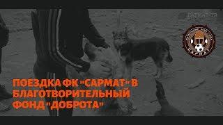 """Поездка ФК """"Сармат"""" в Благотворительный фонд по защите животных """"Доброта"""""""