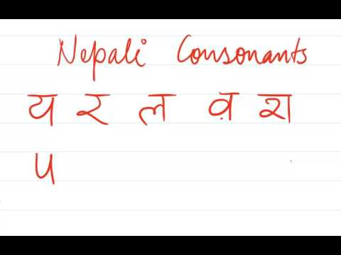 Last set of remaining consonants य र ल व श ष स ह क्ष त्र ज्ञ