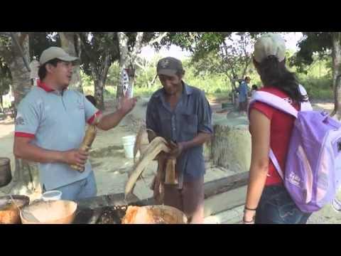 PROCESAMIENTO DE LA CAÑA PARA CONVERTIRLA EN PANELA