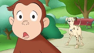 Curious George 🐵 Where's The Firedog 🐵Compilation🐵 HD 🐵 Cartoons For Children