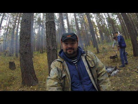 Попался с валежником в лесу.