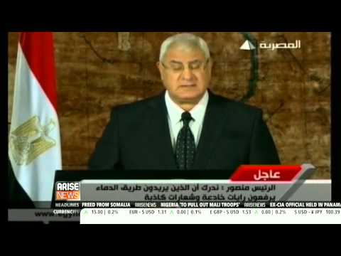 Egypt's interim President Adly Mansour promises security and stability